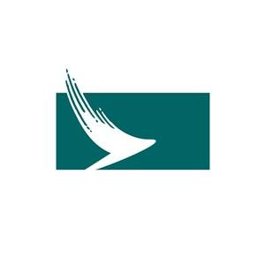 抽象飞鸟翅膀网络科技logo