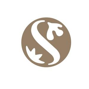 服饰时尚S字母logo标志