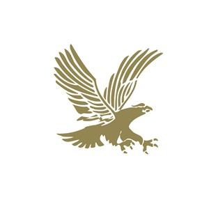 电子机械老鹰logo标志