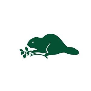 松鼠美容医疗logo设计