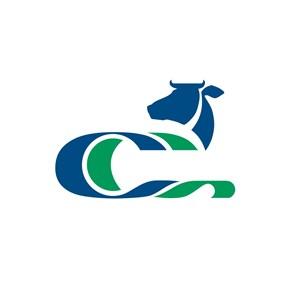 C字母牛图案设计传媒logo