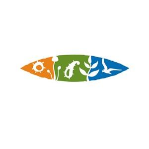 花纹设计传媒公司logo