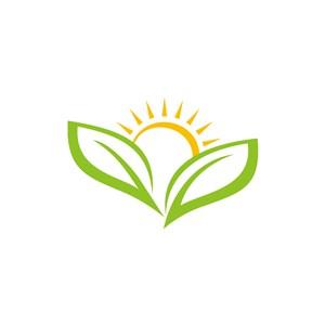 教育培训logo设计-绿色黄色太阳叶子矢量 logo图标素材下载