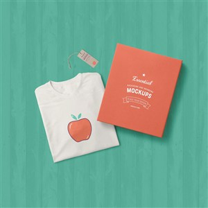 T恤包装盒服饰组合样机模板