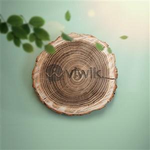 木纹生态标志LOGO样机模板