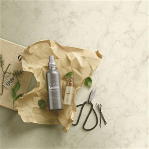 時尚化妝品護膚品包裝設計模板樣機