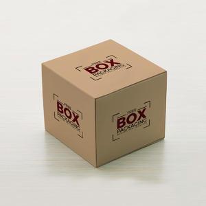 精致纸箱包装样机