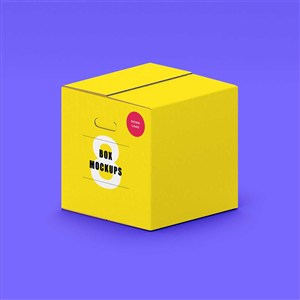 个性纸盒包装样机