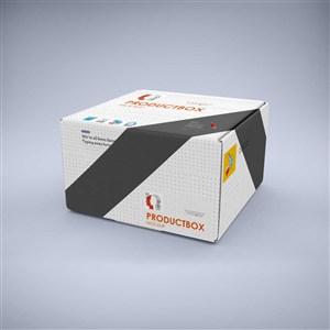 精致產品紙箱包裝樣機
