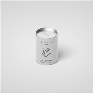精美茶叶罐包装样机模板