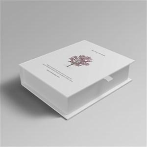 简约盒子纸盒化妆品护肤品包装盒样机
