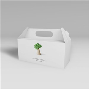 纸盒包装盒高档手提礼盒包装样机