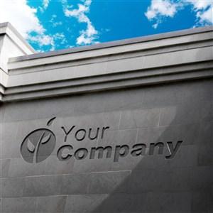 企業logo公司立體標志門頭樣機