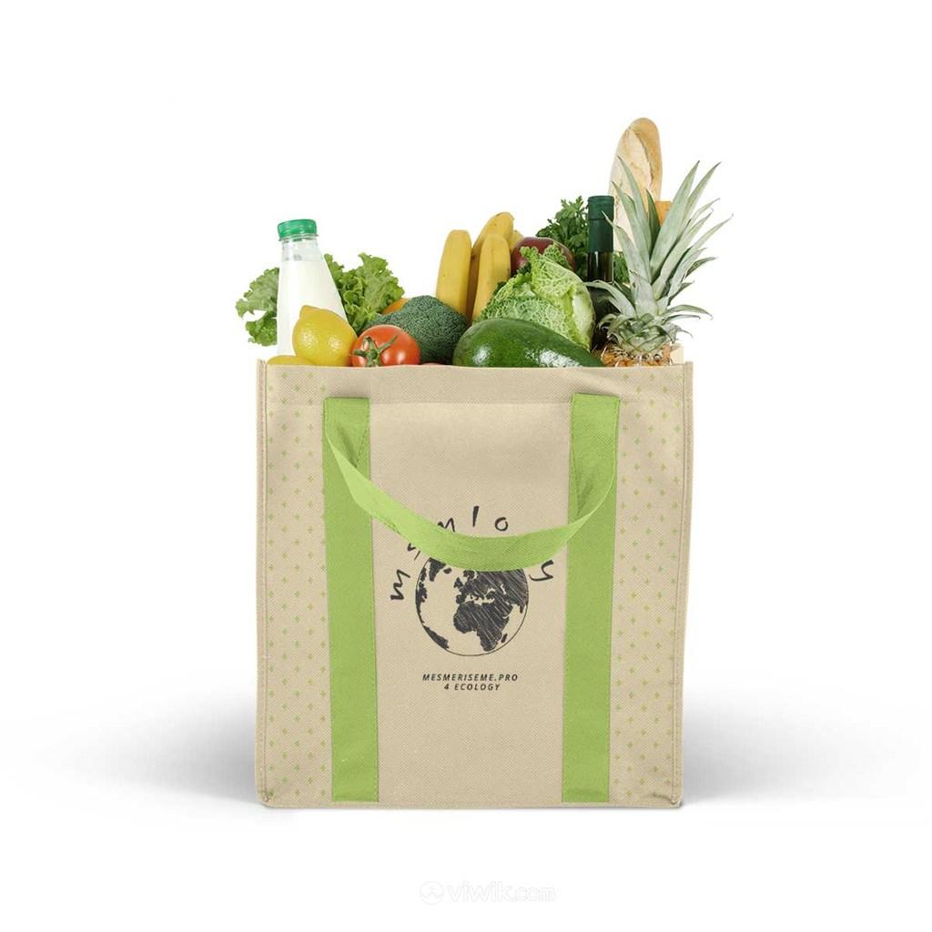 环保购物袋样机