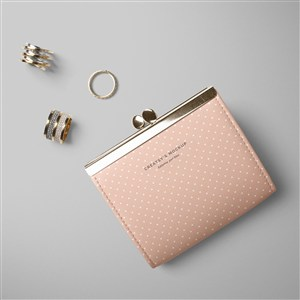 女性时尚品牌钱包样机