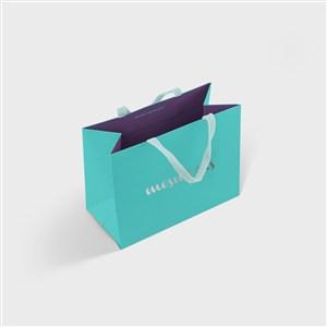 蓝色手提袋纸袋样机