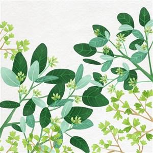 手绘小清新绿叶植物素材