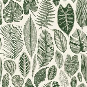 古典线描木刻树叶底纹素材