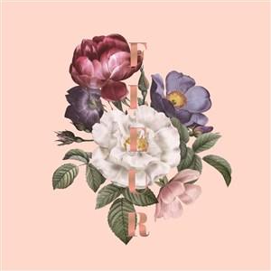 手绘月季玫瑰花素材
