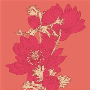 請柬海報紅色花卉背景素材