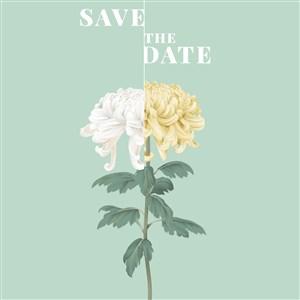 雙色菊花唯美花卉海報背景素材