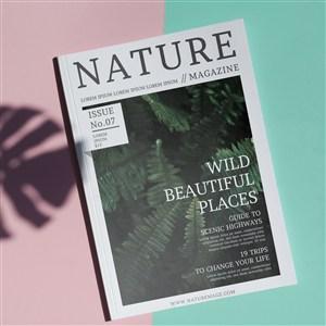 簡單背景下的自然雜志樣機