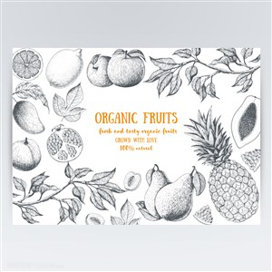 天然有机苹果菠萝梨子菠萝石榴手绘水果图