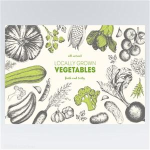西红柿萝卜西兰花南瓜有机蔬菜手绘美食素材