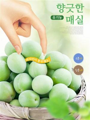 韓國健康綠色水果美食電商促銷宣傳海報