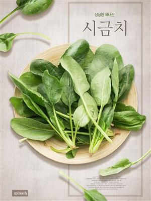 韓國健康綠色菠菜美食電商促銷宣傳海報