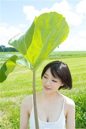 叶子下短发性感日本俏秘书美女图片