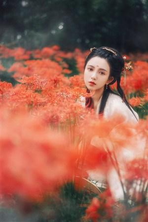 彼岸花中漂亮的古典美女图片