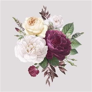 唯美月季大麗花牡丹矢量花朵圖