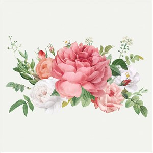 粉色牡丹花玫瑰花矢量花朵图