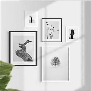 带树叶和阴影的组合相框贴图样机