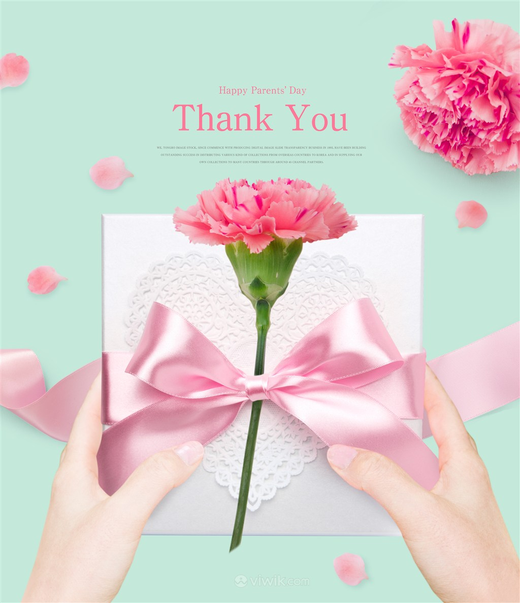 粉色蝴蝶结礼盒康乃馨母亲节海报模板