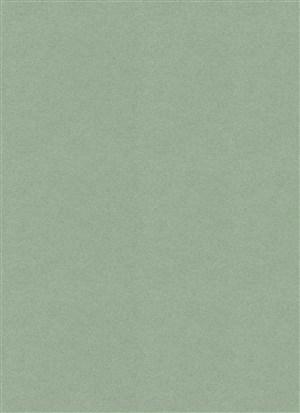 纹理绿色古典纸纹背景图片