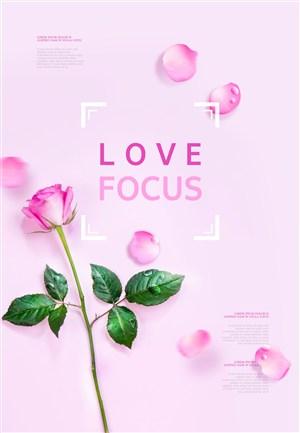 粉色玫瑰花朵花瓣感恩节海报模板
