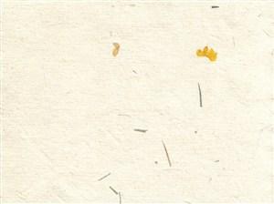 稻草花瓣横板中式斑驳纸纹背景图片