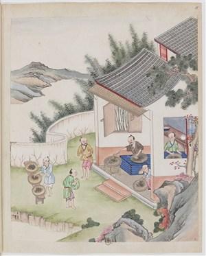 古代制茶炒茶晒茶茶艺场景绘画图片