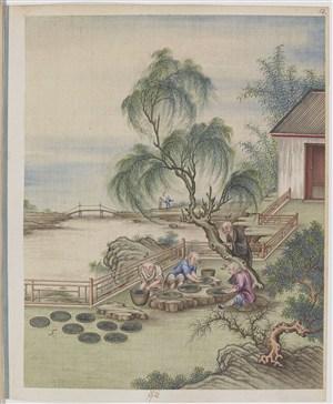 古代江边晒茶制茶贸易场景绘画图片