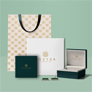 珠宝店vi手提袋包装盒贴图样机
