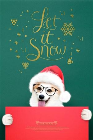 带圣诞帽的可爱柯基宠物海报模板